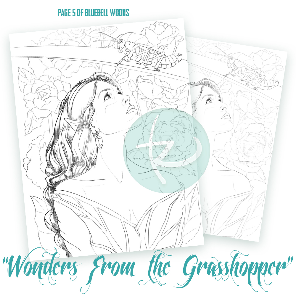 Bluebell Woods Page 5 - Wonders from the Grasshopper