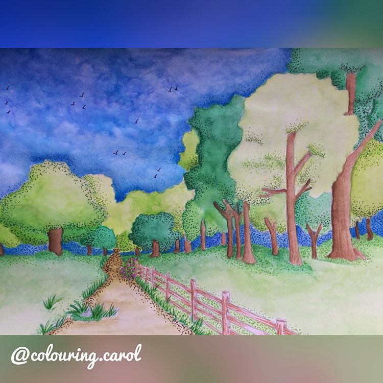 Entering Bluebell Woods by ColouringCarol on Instagram