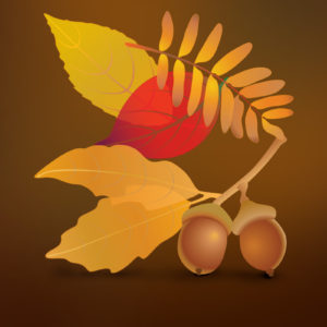 Fall Leaves Free Vector Illustration